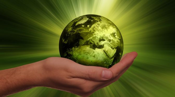 transforming-sustainability-strategy-into-action