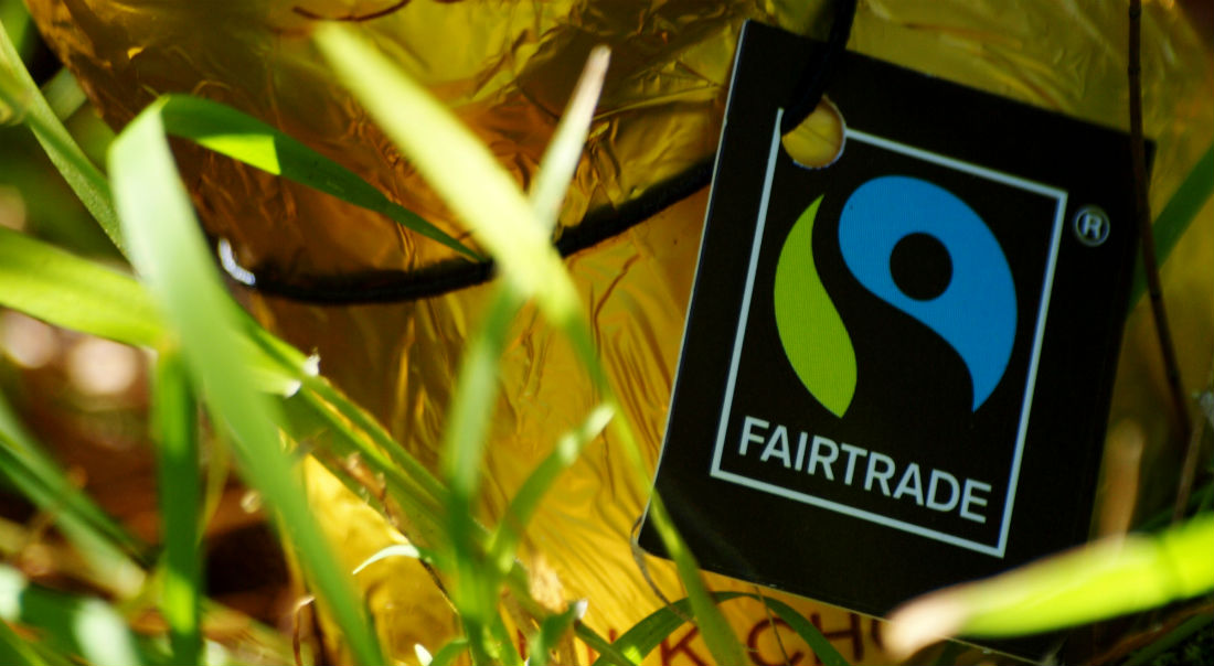 fair trade movement Fair trade's role in supporting the un sdgs october 1, 2018 fair trade is a global movement and fair trade certification ensures that products are produced according to rigorous economic, social and environmental standards.