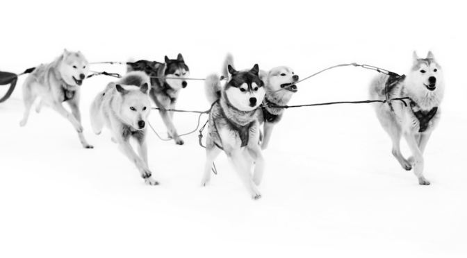 teamwork-makes-dream-work