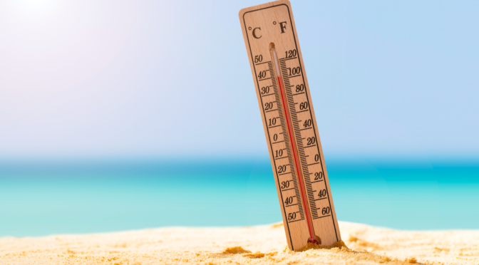 new-zealand-government-procurement-a-temperature-check